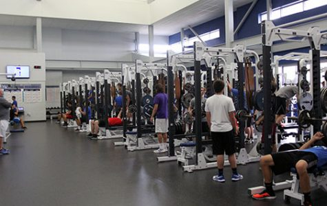 Segregated weights classes unnecessary